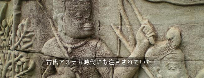 チアシードは古代アステカ時代から注目されていた