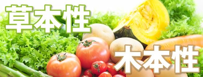草本性と木本性で野菜と果物を分ける