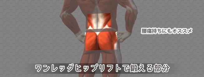 ワンレッグヒップリフトで鍛える筋肉